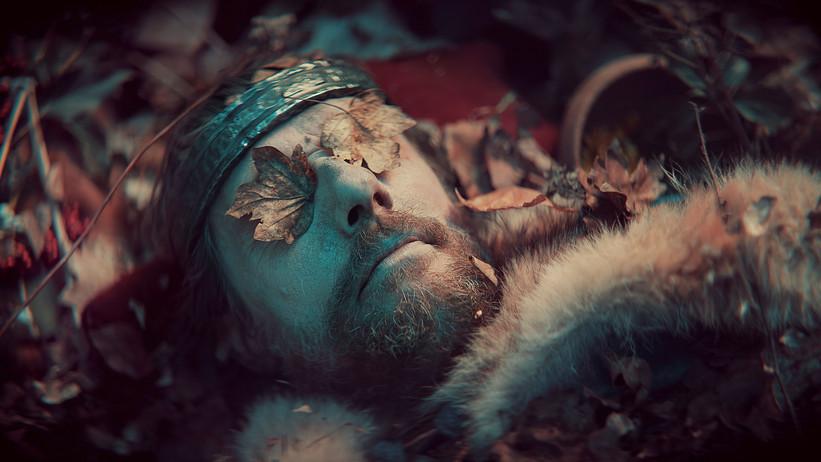 I vikingernes verden